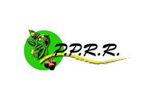 PPRR : Programme de promotion de revenux ruraux, Financement FIDA